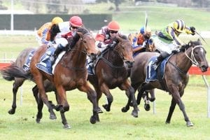 Pole position for Lowry and Cullen Guineas pair