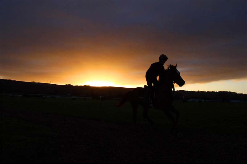 UK horse racing integrity