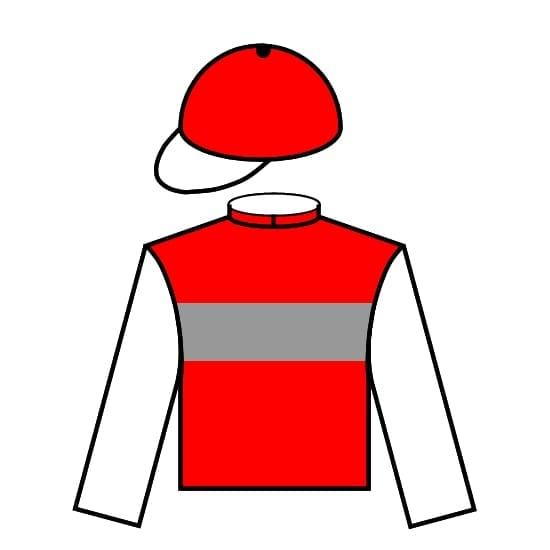 Horse/Jockey silks icon