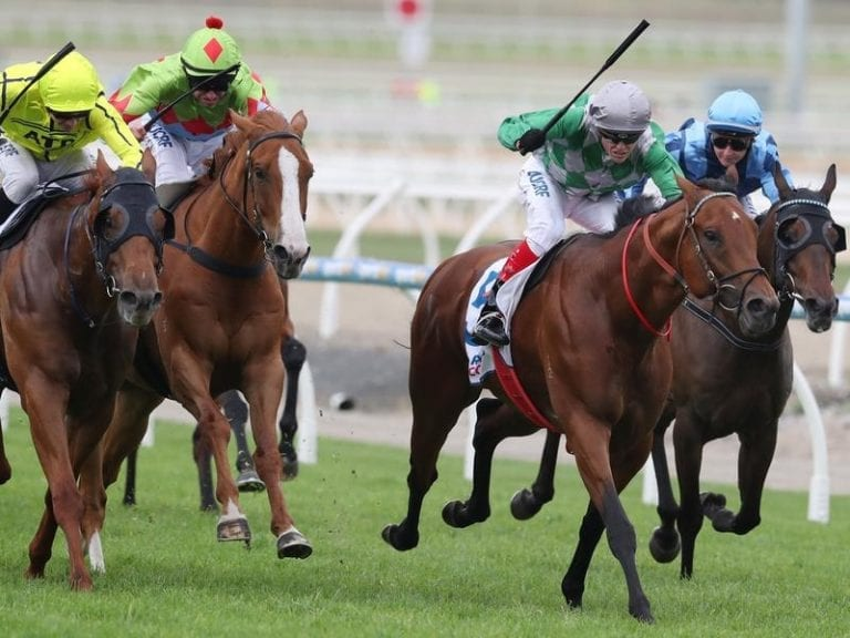 Horse racing betting online australia news north coast sports betting