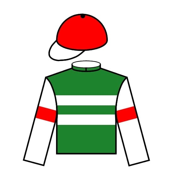 Horse/Jockey silks icon