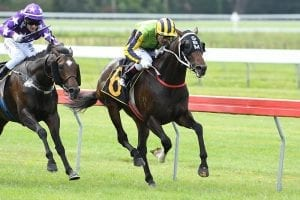 Prosecutor ready for Group 1 Crown
