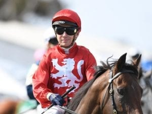 Baster to ride True Excelsior in G1 in NZ