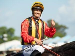 Damian Browne ride inquiry adjourned
