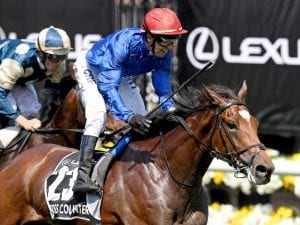 Dubai Gold Cup plans for Cross Counter