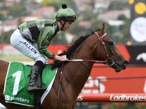 Yes Yes Yes out of Magic Millions