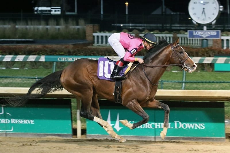 Lecomte Stakes Betting Guide | US Horse Racing | Tips & Odds