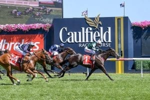 Facts and figures on Blue Diamond Stakes