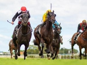Jeff Lloyd magic a real boost for Emphasis