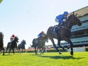 Alizee draws wide in G1 Futurity Stakes