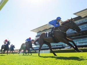 Alizee on song for G1 Futurity Stakes