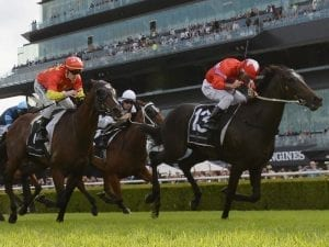 Price gallopers set to trial at Cranbourne