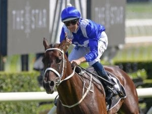Winx primed for fourth Chipping Norton