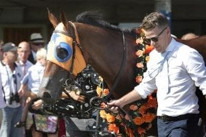 Melody Belle vying for fifth Group One