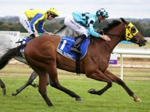 Ben Thompson flys in for Oakleigh Plate