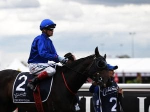 Craig Williams to ride Encryption 1kg over