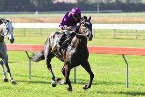 Platinum Invador keeps Derby hopes alive