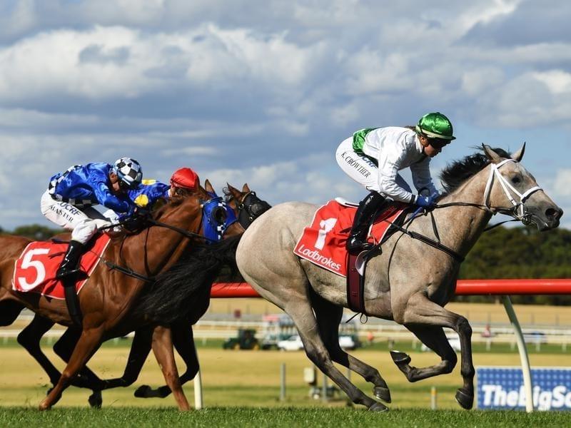 Horse betting tips nzd smart sports betting strategies video