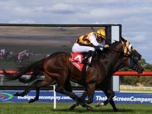 In-form McEvoy completes a Sandown treble
