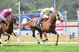 Shadows Cast ready to add to Group One haul