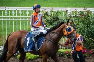 Owners reject offer for Melody Belle