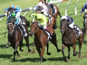 Siren's Fury claims Star Kingdom Stakes