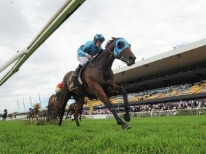 Early Rosehill double for Tulloch Lodge