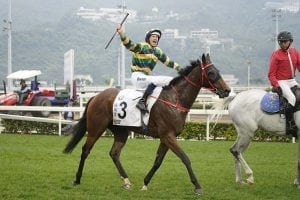 Furore catches the eye as FWD QEII Cup entrants trial at Sha Tin