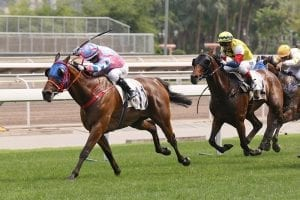 First Hong Kong win for Alfred Chan