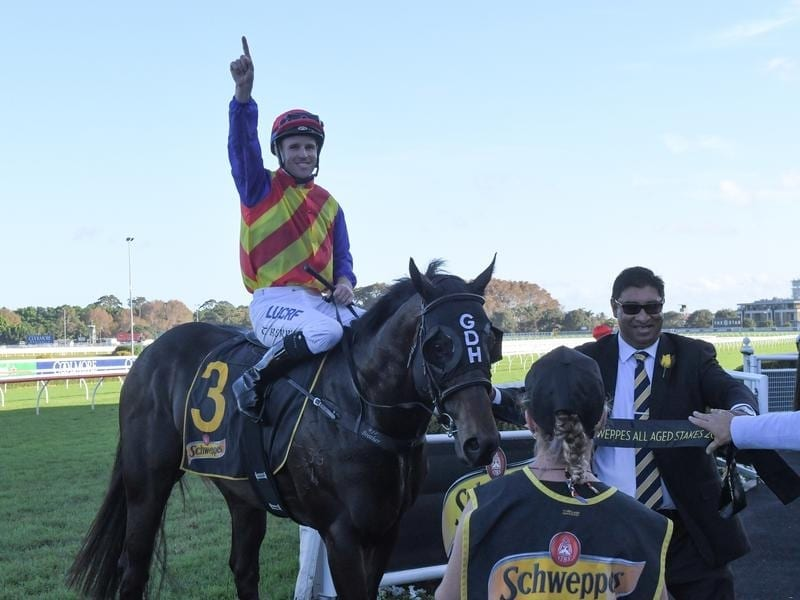 Jockey Tommy Berry returns to scale after riding Pierata to victory