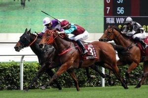 Beat The Clock's battles Rattan to win Chairman's Sprint