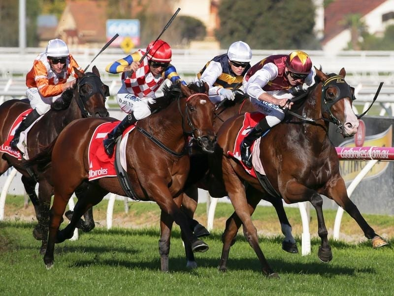 Jockey Clayton Douglas rides Streets of Avalon to victory