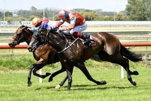 Tiley saddles two in defence of Easter crown
