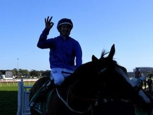 Bowman dreaming of another Doncaster win