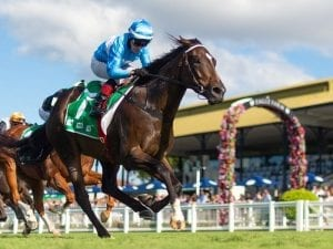 From Within confirms path to winter riches