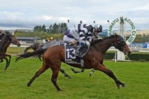 Gutsy Fiscal Fantasy takes out Manawatu Breeders' Stakes