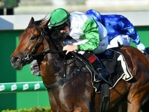 Outback Barbie to race in blinkers