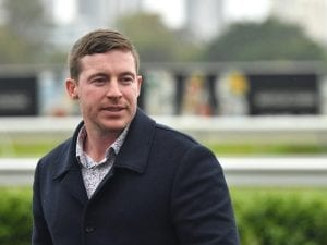 Trainer Ben Currie gets further stay