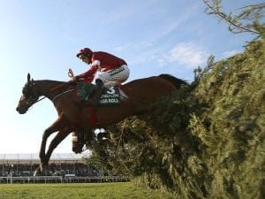 Tiger Roll wins second Grand National