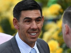 NZ stayer Rock On to race in Victoria