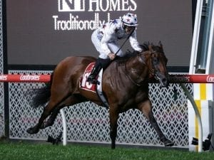 Sunlight to head to Adelaide Group 1 race