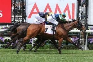 Luvaluva on track for Brisbane