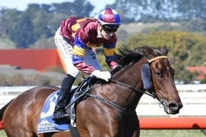 Wheeler shooting for another Warrnambool double