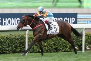 Tough Mission for Lor's four-year-old in Group 2 Chairman's Trophy