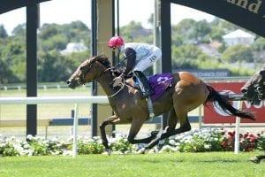 Queensland awaits Moroney-Gerard runners