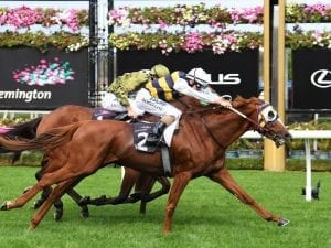 Chieftain ticks the right boxes: Alexander