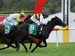 Future Score set to target free Cup entry