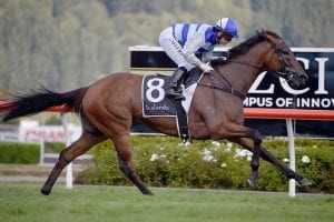 G1 redemption on the cards for in-form Supera