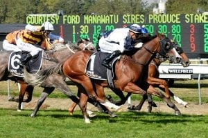 Spring features in-mind for talented two-year-olds
