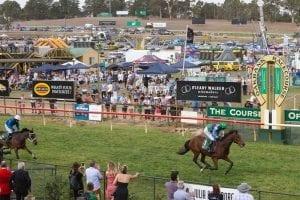 Kiwi jumper the King of Oakbank